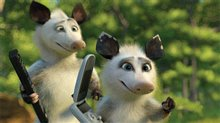 Over the Hedge Photo 14
