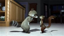 Over the Hedge Photo 16
