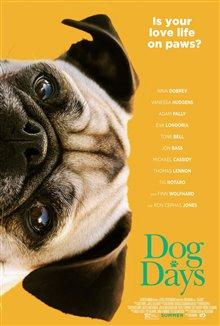 Par amour des chiens Photo 13