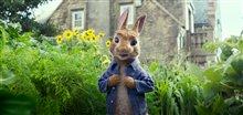 Peter Rabbit photo 1 of 2