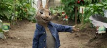 Peter Rabbit Photo 6