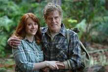 Pete's Dragon Photo 7