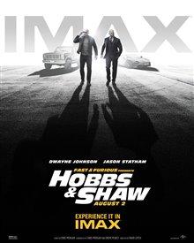 Rapides et dangereux présentent : Hobbs et Shaw Photo 22