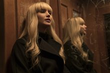 Red Sparrow Photo 7