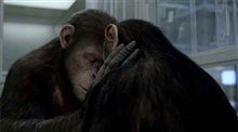Rise of the Planet of the Apes Photo 5