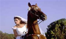 Runaway Bride Photo 7