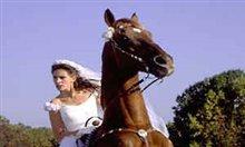 Runaway Bride Photo 7