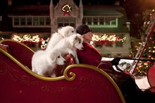 Santa Paws 2: The Santa Pups photo 4 of 8