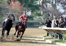 Seabiscuit Photo 3