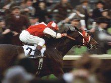 Seabiscuit Photo 7