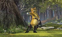 Shrek 2 photo 17 of 21