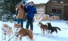 Snow Dogs Poster Large