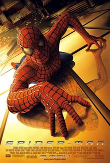 Spider-Man Photo 16