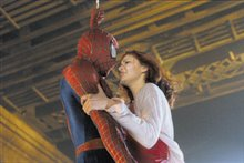 Spider-Man Photo 11