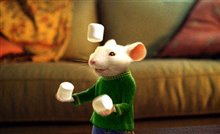 Stuart Little 2 Photo 5