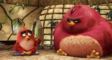 The Angry Birds Movie photo 26 of 45