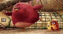 The Angry Birds Movie Photo 30