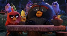 The Angry Birds Movie photo 32 of 45