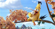 The Angry Birds Movie Photo 36