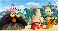 The Angry Birds Movie 2 Photo 12