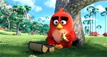 The Angry Birds Movie photo 1 of 45
