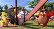 The Angry Birds Movie photo 14 of 45