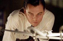 The Aviator Photo 3
