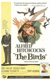 The Birds Photo 1