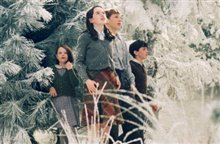 The Chronicles of Narnia: The Lion, the Witch and the Wardrobe photo 8 of 27