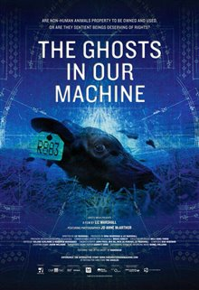 The Ghosts in Our Machine Photo 1