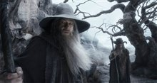 The Hobbit: The Desolation of Smaug - An IMAX 3D Experience photo 38 of 71