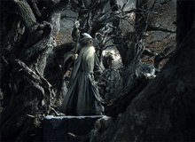 The Hobbit: The Desolation of Smaug Photo 37