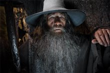 The Hobbit: The Desolation of Smaug Photo 45