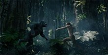 The Legend of Tarzan Photo 28