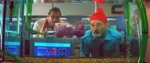 The Life Aquatic With Steve Zissou Photo 3