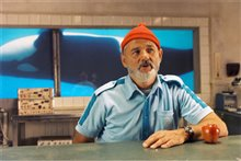 The Life Aquatic With Steve Zissou Photo 24
