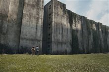 The Maze Runner Photo 1