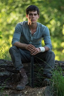The Maze Runner photo 20 of 20
