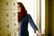 The Salesman Photo 6
