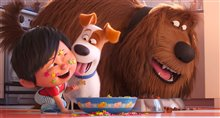 The Secret Life of Pets 2 Photo 5