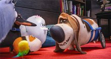 The Secret Life of Pets