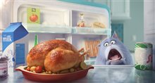 The Secret Life of Pets Photo 13