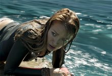 The Shallows photo 13 of 24