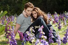 The Twilight Saga: Breaking Dawn - Part 2 Photo 10