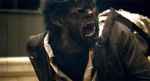 The Wolfman photo 24 of 38