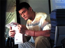 The Year of the Yao Photo 3