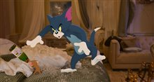 Tom & Jerry Photo 17