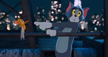 Tom & Jerry Photo 19