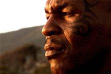 Tyson photo 6 of 7