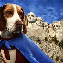 Underdog Photo 14